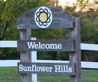 sunflower featured